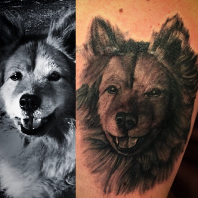 Dog-portrait-tattoo-Done-by-Drew-was-a-lot-of-fun-@victorytattooink-dogportraittattoo-portraittattoo