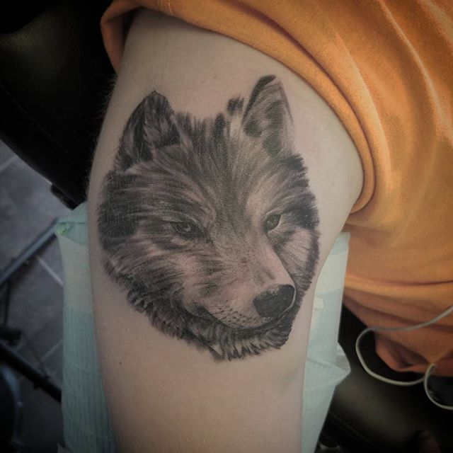 Start-to-another-awesome-sleeve.-Wolf-done-byDrew-Harris-at-Double-Deez-Tattoos-in-West-Chester.-@dr