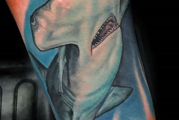 Check-out-this-little-hammerhead-shark-by-John-Black-at-Double-Deez-Tattoos-in-West-Chester.-Check-h